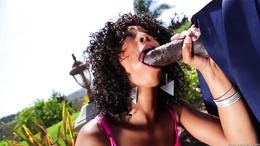 Ebony babe Misty Stone is banged by a big black dick
