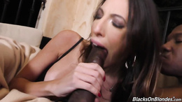 Mouth and pussy stretched to the max by a BBC for hot Dava Foxx