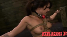 Obedient milf plays along male's dirty desires during rough BDSM