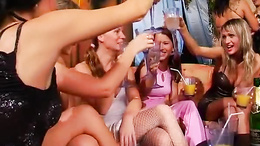 Lesbian party babes licking muffs