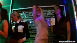 Sexy girls dancing erotically in a club